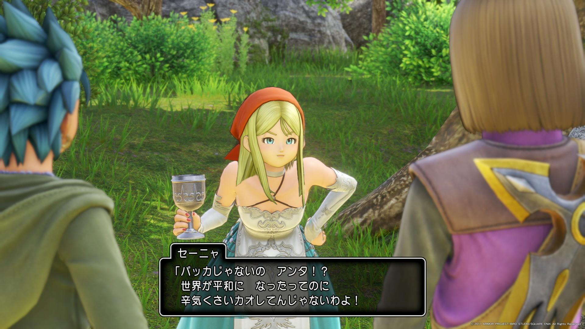 悲報 ドラクエ11のエマさん 酒乱だった 画像 爆newゲーム速報