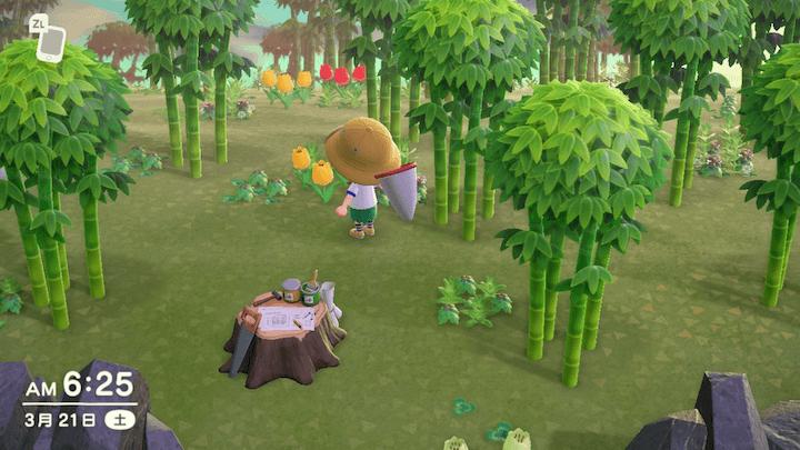 の 森 わか たけ どうぶつ はるの